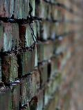 The wall stretches down perspective background. Wall moving away perspective background as bricks angle nail look the closer the farther the Wallpaper substrate Stock Images