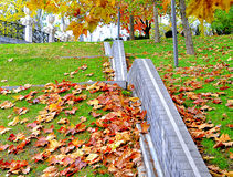 Wall surrounded by leaves Royalty Free Stock Photo