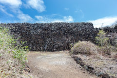 Wall Of Tears, Muro de las Lagrimas, Isabela Island, Galapagos Islands, Ecuador Stock Photography