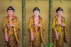 The wall in the temple is filled with buddhas. Religion Buddhism concept. Texture, background Buddhism.  stock photo
