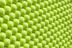 Wall of tennis balls aligned - background. Pattern Stock Image