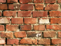 WALL texture. From red bricks Royalty Free Stock Images