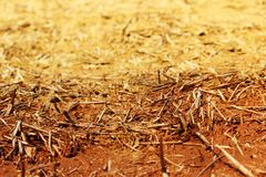 The wall texture of an adobe house made from barley straw and two kinds of clay. Royalty Free Stock Photography