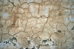 Wall texture. Background close up royalty free stock photo