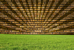 Wall, texture and grass. Simple wall and grass to write on it or as a simple background Stock Photos