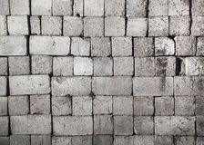 Wall texture. Stock Photography