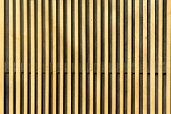 Wall of thin wooden slats. Vertical parallel plates. Blank background royalty free stock images