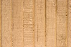 Wall tightly fitting unpainted boards with wood structure. Fence of vertical, tightly fitting unpainted boards with wood structure Royalty Free Stock Photography