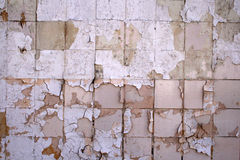 Wall tiles Royalty Free Stock Photo
