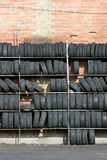 Wall of tires, vertical. Wall of used tires, vertical version stock images