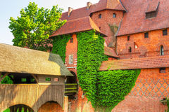 The wall and towers of Malbork castle Stock Photography