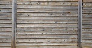 wall trä Arkivfoton