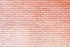 wall trä Royaltyfria Foton