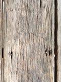 wall trä Fotografering för Bildbyråer
