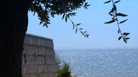 Wall and tree, shiny surface of the sea in the background. Summer time stock video footage