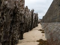 Wall and tree trunks on the beach of Saint-Malo at low tide. Wall and tree trunks on the beach of Saint-Malo Brittany, France at high tide on a cloudy day in royalty free stock photos