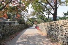 Wall, Tree, Walkway, Autumn royalty free stock photo