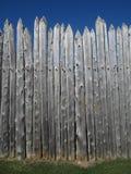 Wall of Trees Stock Photos