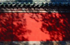 Wall and trees shadow. A typical chinese red wall with pine trees shadow on it Stock Photography