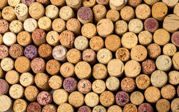 Wall of used wine corks. Royalty Free Stock Images