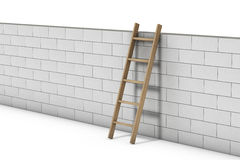 Wall on White. Brick wall and ladder isolated over a white background stock illustration