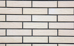 Wall of white raised bricks Royalty Free Stock Photo