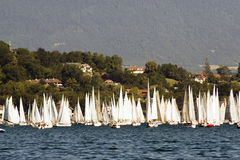 Wall of white sails Stock Image