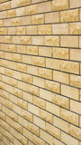 Wall of a wild yellow decorative stone. A wall of a wild yellow decorative stone Stock Photos