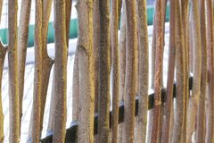 Wall of willow twigs as background. Rural old fence, made from willow tree twigs and branches.