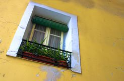 Wall and window. Yellow picturesque wall with a window Stock Images