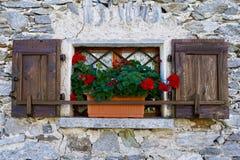 Wall, Window, Flower, Facade Royalty Free Stock Photo