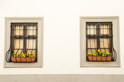Wall with window and flowers Stock Photos