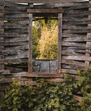 Wall, Window, Leaf, Stone Wall stock photos