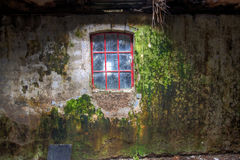 Wall and window of old farmhouse. A moss covered wall and a window of an old farmhouse Royalty Free Stock Photo