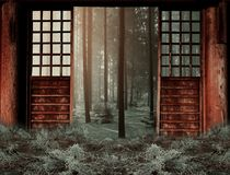 Wall, Window, Wood, Tree Royalty Free Stock Images