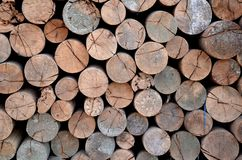 Wall from the wood logs Royalty Free Stock Photo