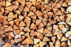Wall of wood stump Stock Image