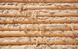 Wall from wooden logs Stock Photography