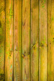 Wall wooden planks covered paint primer Royalty Free Stock Photos