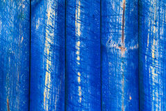 The wall wooden planks painted blue Royalty Free Stock Image