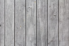 Wall wooden planks painted  white grey Royalty Free Stock Image