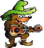 wallaby гитары мексиканский играя Стоковое фото RF