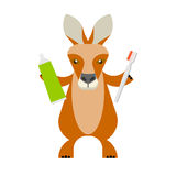 Wallaby with toothbrush. Illustration of a wallaby on a white background Royalty Free Stock Image