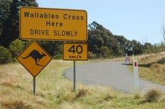 Wallaby znaka skrzyżowanie Fotografia Stock