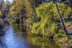Wallace River Royaltyfria Foton
