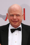 Wallace Shawn Stock Photo