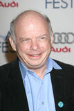 Wallace Shawn Royalty Free Stock Photography