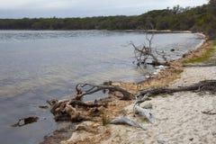 Wallagoot Lake, Bournda National Park,Australia Stock Images