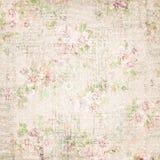 Wallaper chique floral gasto floral francês do vintage Fotografia de Stock Royalty Free