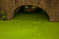 Walled canal with aquatic greenish plants and boat under arched bridge at Gouda. Very popular day trip destination, is famous for its tasty Gouda cheese Royalty Free Stock Images